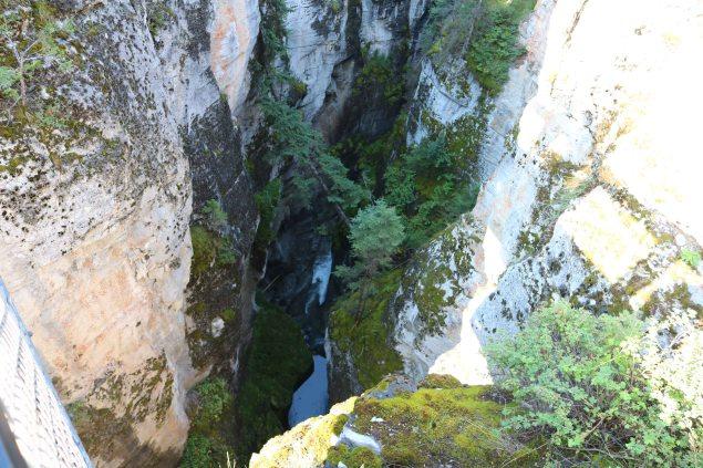 Canyon300